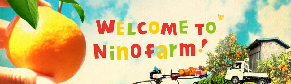 ニノファームは愛媛県の宇和島という町でみかんを育てている小さな農園です。産地直送販売。おいしい宇和島みかんを届け致します。